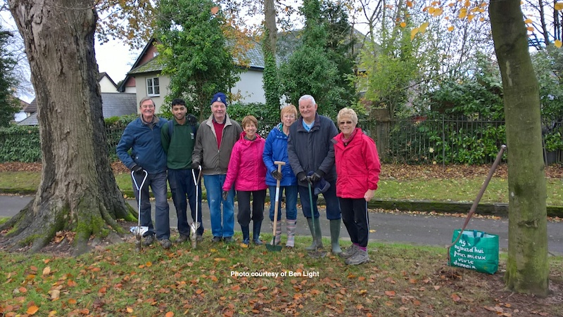 Crocus Planting At Beechwood